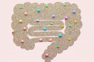 デトックス 腸内細菌  ダイエット ファスティング 善玉菌 悪玉菌